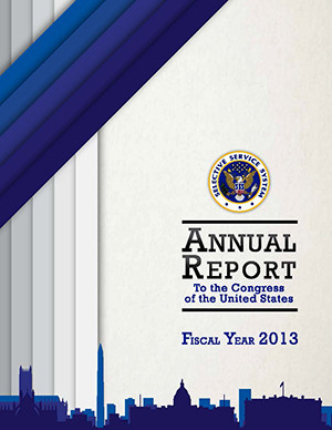Annual Report to Congress - FY 2013